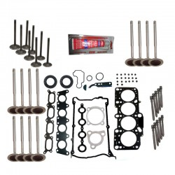 ENGINE CYLINDER Head Gasket Set W BOLTS,INTAKE,EXHAUST VALVES & SEAL VW AUDI