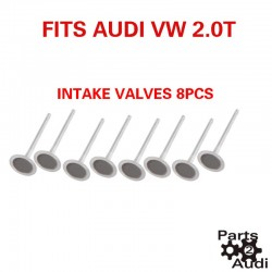 Engine Intake Valves Exhaust Valves 16pc Kit Fits Audi VW