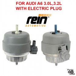 OE REIN Engine Motor Mount Set For Audi A6 A6 Quattro V6