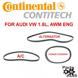 CONTI Engine Drive Belt Kit Air conditioning,Alternator and Power Steering For Audi VW